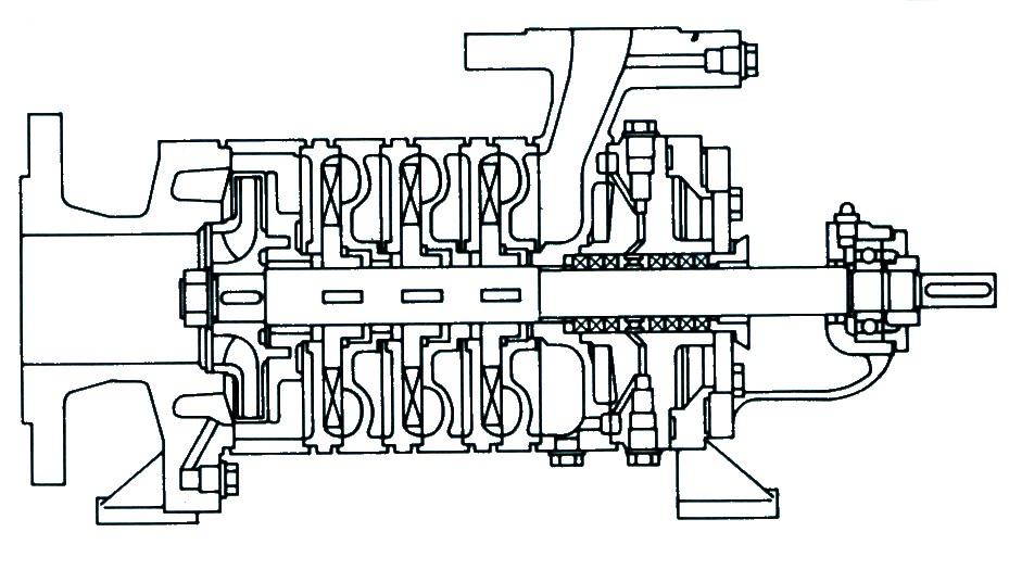 Schema pompe multicellulaire